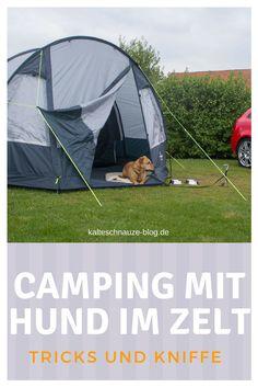 Zelten mit Hund: Wie füttere, wo mache ich den Hund fest und welches Material ist für Outdoor gut geeignet.
