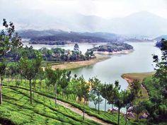 Get your best tour in Goa by Goan Village Hotel at http://www.toshalivalyou.com/goan-village.html