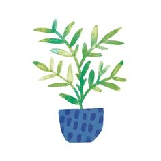 Day 58 #JBP100Plants #The100DayProject #APlantADay