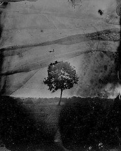 Il est des peines que nul ne connait. Il est des profondeurs que le soleil jamais ne sonde. Des monts de silence entourent les lèvres. Et tous les témoins se taisent. Les yeux ne disent pas. Il n'est point d'escalier si profond qui descende là où s'agite l'être de l'homme. Si le silence parlait, s'il soufflait, s'il éclatait – il déracinerait tous les arbres du monde.  Nikiforos Vrettakos Traduction par Ioannis Dimitriadis