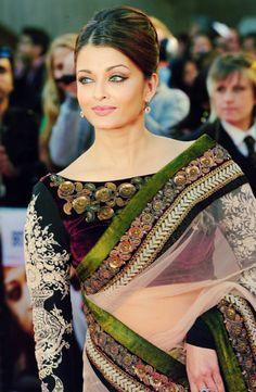 Luxurious sari