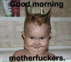This baby cracks me up! Good Morning Funny, Morning Humor, Happy Morning, Morning Quotes, Funny Baby Memes, Stupid Funny Memes, Hilarious Stuff, Funny Images, Awesome