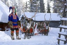 Sami man with two reindeers - THE INDIGENOUS PEOPLE OF THE ARCTIC