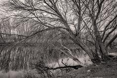 Next to the river Fear Of The Dark, You Can See Me, Black And White Photography, The Darkest, About Me Blog, Country Roads, River, World, Awesome