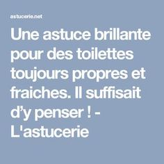 Une astuce brillante pour des toilettes toujours propres et fraiches. Il suffisait d'y penser ! - L'astucerie Diy Cleaning Products, Cleaning Hacks, Flylady, How To Remove Rust, Home Organisation, Natural Cleaners, Paint Colors For Living Room, Room Paint, I Can Do It