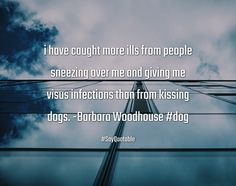 Quotes about i have caught more ills from people sneezing over me and giving me visus infections than from kissing dogs. -Barbara Woodhouse #dog  with images background, share as cover photos, profile pictures on WhatsApp, Facebook and Instagram or HD wallpaper - Best quotes