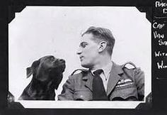 spitfire pilots with dogs - Yahoo Image Search Results