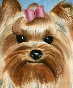Yorkie Painting by Christine Winship - Yorkie Fine Art Prints and Posters for Sale
