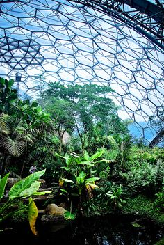 Geodesic Dome Homes - The Sustainable Dome House of the Future - Biodome Glass Geodesic dome homes Luxury passive geodesic dome house Futuristic Dome House Mini Mundo, St Just, Solar, Eden Project, Dome House, Green Architecture, Geodesic Dome, Earthship, Garden Projects