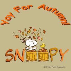 It's Autumn!