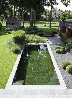 Pool landscaping, swimming pools backyard и swimming pool designs. Swimming Pools Backyard, Swimming Pool Designs, Modern Landscaping, Backyard Landscaping, Backyard Ponds, Natural Swimming Ponds, Contemporary Garden Design, Pond Design, Exterior