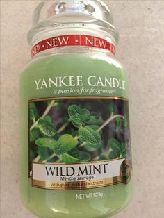 Yankee Candle - Wild Mint Large Jar