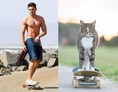 Cats Who Look Like Hot Male Celebrities and Other Funny Things