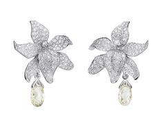 Caresse dOrchidées par Cartier earrings. Platinum, briolette-cut diamonds, diamonds. PHOTO: Vincent Wulveryck © Cartier 2011