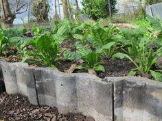 roof TILES for garden edging