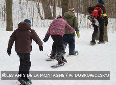 Guided snowshoe walks up Mount Royal.  Fun!  Follow it up with hot chocolate - delish! Snowshoe, Montreal, Hot Chocolate, Walks, Delish, Winter Jackets, Canada, Fun, Winter Coats