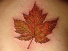 Canadian Maple Leaf tattoo This Is The Work Of MFL-Dave! Rate of pictures of tattoos, submit your own tattoo picture or just rate others Fall Leaves Tattoo, Autumn Tattoo, Autumn Leaves, Maple Leaves, Tatto Love, Tattoo For Son, Tatoo Art, I Tattoo, Moose Tattoo