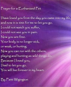 Crone Cronicles: Prayer for a Euthanized pet