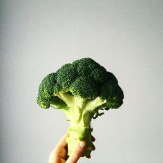 Jeśli kiedykolwiek powstaną wybory najładniejszych warzyw, będę głosować na brokuła!  #gotowanie #brokuły #obiad