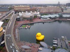 Rubber duck at Darling Harbour. Sydney Australia