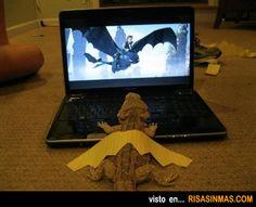 Una pogona fan de la película Cómo entrenar a tu dragón 2.