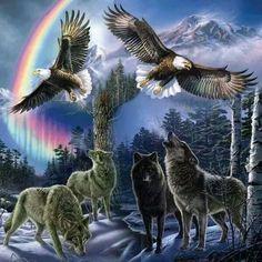 """Caroline """"Eagle Wolf"""" Scheeren - Google+"""