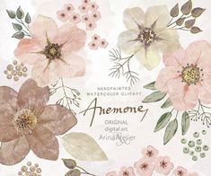 Anemones Watercolor Flowers CLIPART natural - Handpainted flowers, Wedding Florals, Wedding Invitations, DIY Invitation, Watercolor Flowers