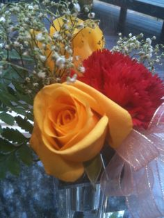 Pretty yelllow rose