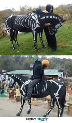 Awesome Halloween costume if you have a horse!