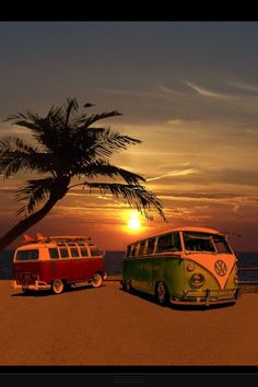 VW Buses on beach.