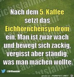 funpot: Bilderzusammenstellung von trw Positive Vibes Quotes, Word Fonts, Good Jokes, Funny Facts, True Words, Funny Cute, Words Quotes, Sarcasm, Lyrics