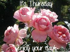 It's Thursday!(but today it is monday!lol)