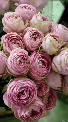 ♔ Pink lace roses