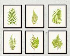 Vintage Ferns Print Set No. 1 Botanical Print by BelleBotanica