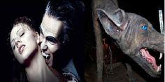 खूनी पिशाच – जानिये इस खूनी पिशाच के बारे में, देखें तस्वीरें