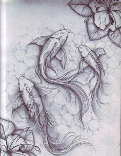 """Koi fish are the domesticated variety of common carp. Actually, the word """"koi"""" comes from the Japanese word that means """"carp"""". Outdoor koi ponds are relaxing. Koi Fish Drawing, Koi Fish Tattoo, Fish Drawings, Pencil Art Drawings, Art Drawings Sketches, Animal Drawings, Art Koi, Fish Art, Koi Kunst"""