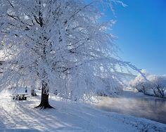 nieva | Banco de Imágenes Gratis: La nieve, el mar y los paisajes (35 ...