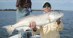 Kayak Fishing Tips Discover the best tips on how to catch more redfish, snook, and gator trout than you ever have before without needing live bait [PDF fishing guide included] Fishing 101, Surf Fishing, Fishing Guide, Best Fishing, Saltwater Fishing, Fishing Boats, Fishing Cart, Fishing Basics, Fish Jumps