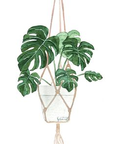 Plant Painting, Plant Drawing, Plant Art, Painting Art, Watercolor Plants, Watercolor Paintings, Watercolor Artists, Abstract Paintings, Oil Paintings