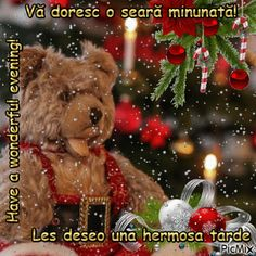 Vă doresc o seară minunată!i1 Teddy Bear, Toys, Animals, Activity Toys, Animales, Animaux, Toy, Teddy Bears, Animal Memes