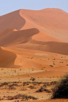 Sossuvlei sand dunes in Namibia: 3 hour walk to reach Deadvlei (the dead lake) - what an incredible experience