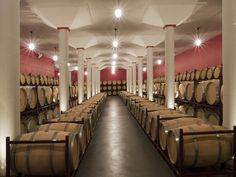 Sala de Barricas de Bodegas Rodero, uno de los vinos más apreciados por los amantes del Tempranillo de Ribera del Duero