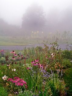 by Matthew Cunningham Landscape Design by Matthew Cunningham Landscape Design  If you look closely in the background, you can see bright sunflower blooms popping through the fog. They are part of the clients' vegetable garden.