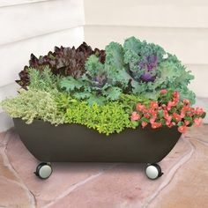 The Mobile Patio Planter  http://www.vegetable-garden-guide.com/container-vegetable-gardening.html