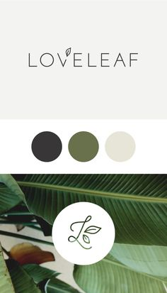 Loveleaf Co. Branding | By Rowan Made (Simple Top Design)