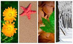 Good News (Gospel) : The Seasons of Life