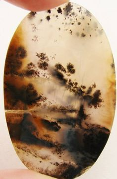 Julia Wallis 14 hrs · Picture agate and picture jasper are the Creator's Easter eggs to us. I have been fascinated with them ever since a boy in my grade school class brought a banded agate to school that he said he found in a creek in North Memphis. The dendritic agates, especially, are full of dimension and create ethereal scenes of trees and foliage that seem to materialize out of someone's misty dream. It is amazing how nature duplicates itself in totally different realms. Dendritic Agate, Agates, Jasper Stone, Wallis, Memphis, Ethereal, Easter Eggs, The Creator, Trees