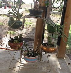 Vintage 50s Brass Finished Art Deco Six Plant Holder Stand