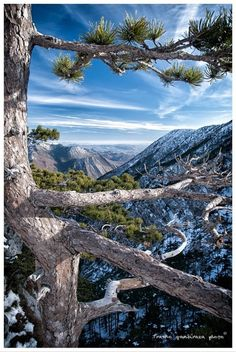 Paklenica National Park, Croatia. Photo: Franko Gambiraža