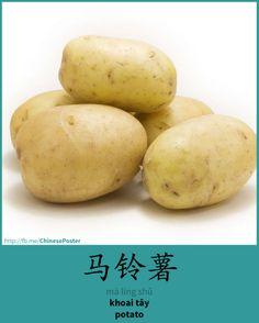 马铃薯 - mǎ líng shǔ - khoai tây - potato